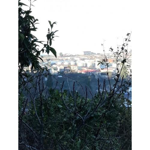 Купить участок в Батуми с видом на море, горы и город