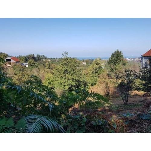купить земельный участок в батуми