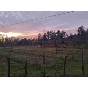 Продажа  земельного участка в Батуми