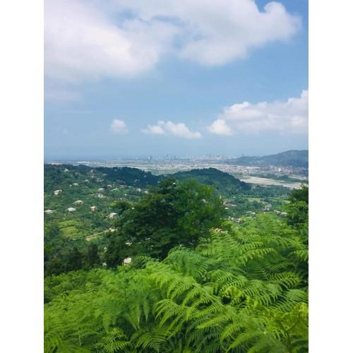 Продажа участка с видом на море, горы, реку и город Батуми