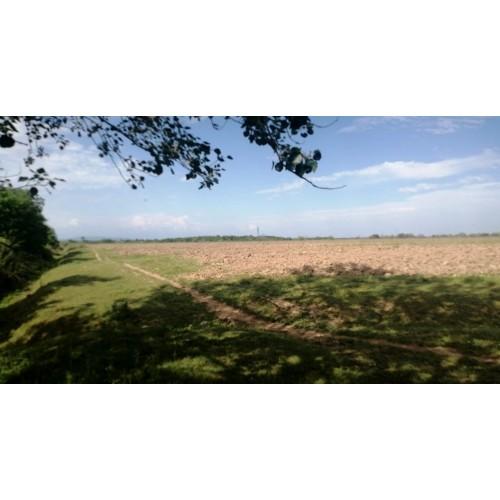 Большой земельный участок площадью 23.8 га недалеко от Батуми