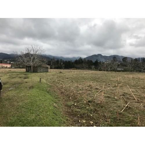 Продается земельный участок недалеко от Кобулети