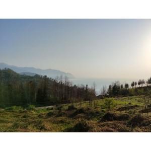 Земельный участок в  Квариати, Батуми, Грузия