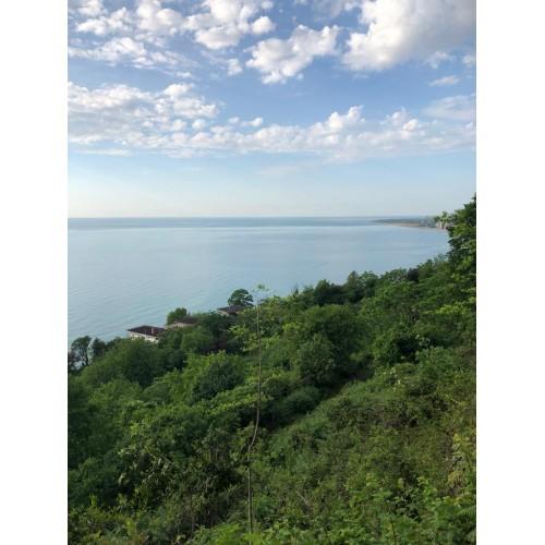 Купить Земельный участок недалеко от Батуми с видом на море.