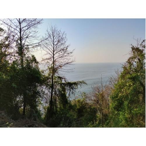 Земельный участок у моря, недалеко от Батуми