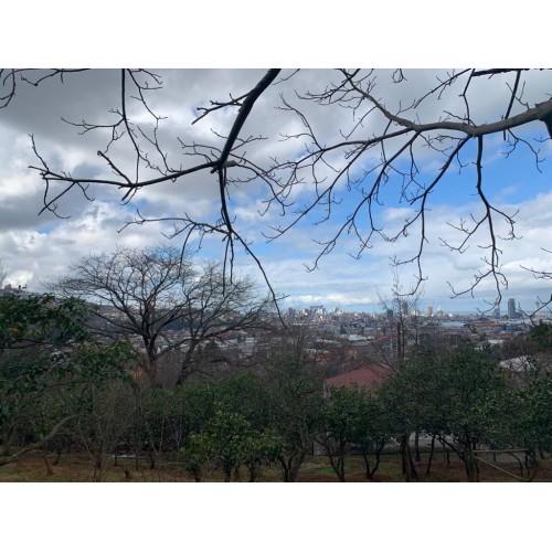 В Батуми продается земельный участок с видом на море и город