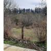 Земельный участок недалеко от Батуми