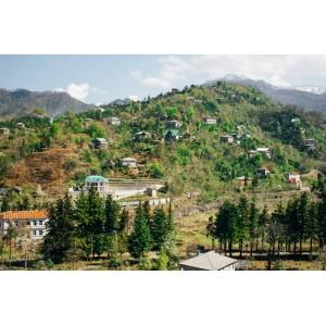 Купить земельный участок недалеко от Батуми, Грузия