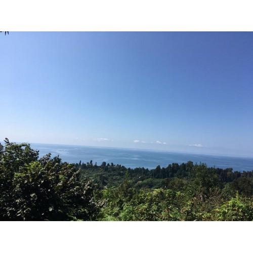 В Батуми продается  земельный участок у моря