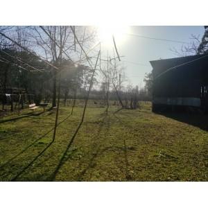 Земельный участок в поселке Чакви,  Кобулети